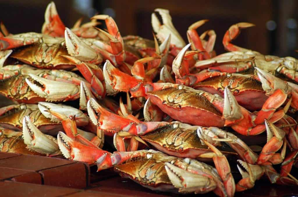 can pregnant women eat crab and imitation crab is it safe