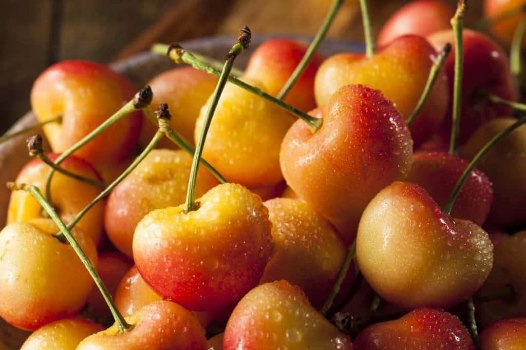healthy and organic Rainier cherries in a bowl